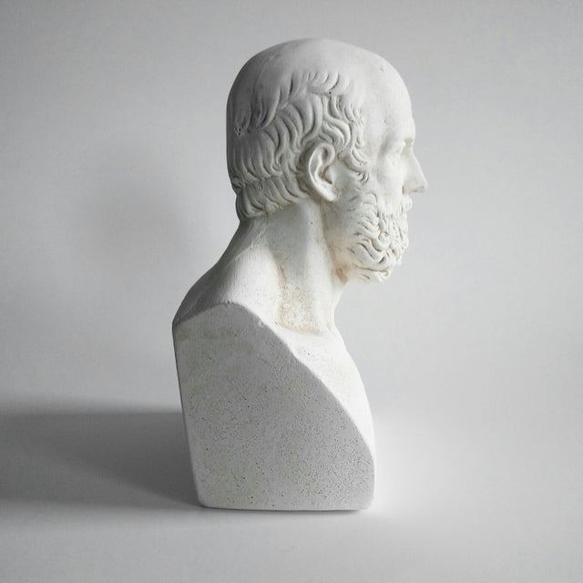 1960s Vintage Grecian Plaster Statue Aristotle Bust For Sale - Image 4 of 6