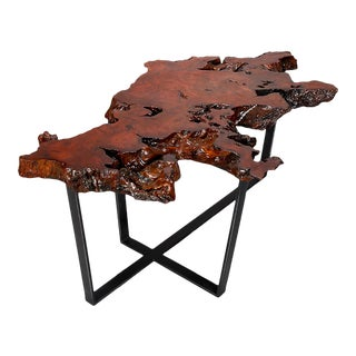 Petrified Live Edge Cocktail or Coffee Table on Black Iron Base For Sale