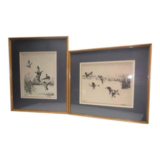 "Antique ""Lake Erie Mallards"" Signed Etching Prints by Richard Bishop - a Pair For Sale"
