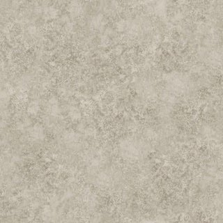 Cole & Son Patina Haze Wallpaper Roll - Warm Gilver For Sale