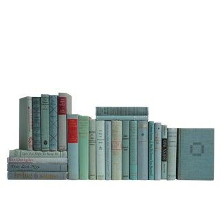 Midcentury Aquamarine Selections : Set of Twenty Five Decorative Books For Sale