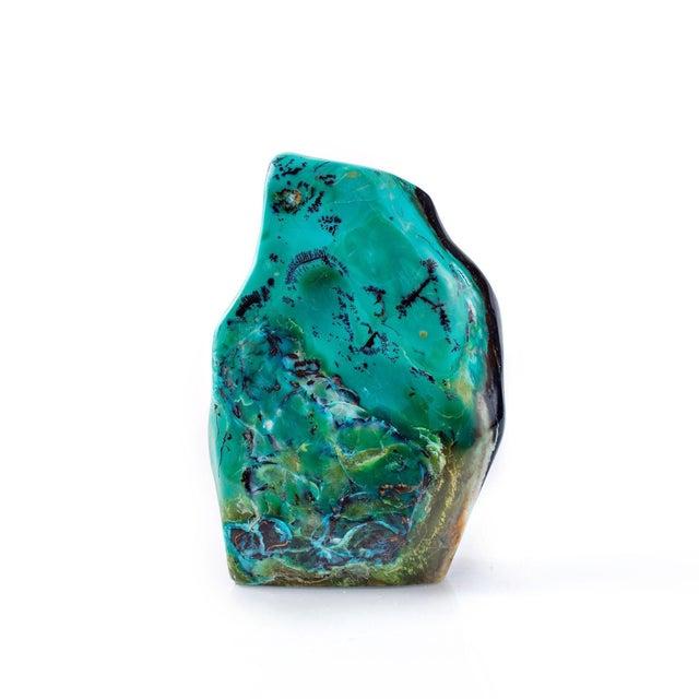 Blue Opal Petrified Wood For Sale - Image 10 of 10