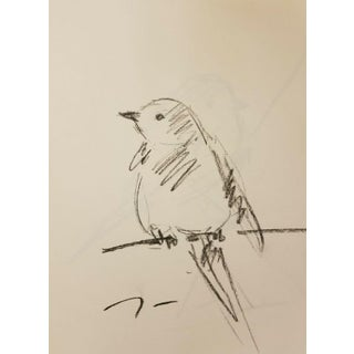 Jose Trujillo Original Little Bird on Branch Charcoal Paper Sketch Drawing For Sale