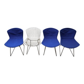 Knoll Bertoia Side Chairs - Set of 4 For Sale