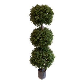Triple Ball Potted Topiary For Sale