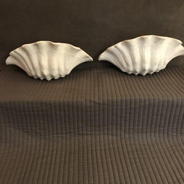 White 1930's Frances Elkins Shell Form Plaster Wall Scones - a Pair For Sale - Image 8 of 8