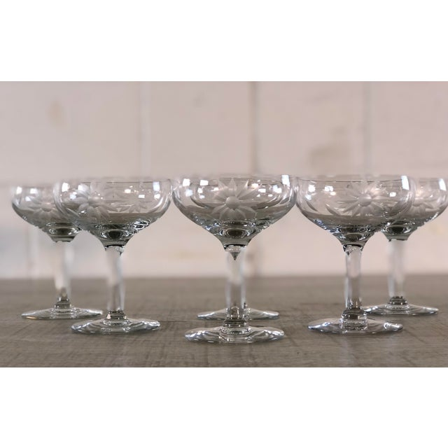 Vintage 1950s set of 6 floral etched glass coupes. No marks.