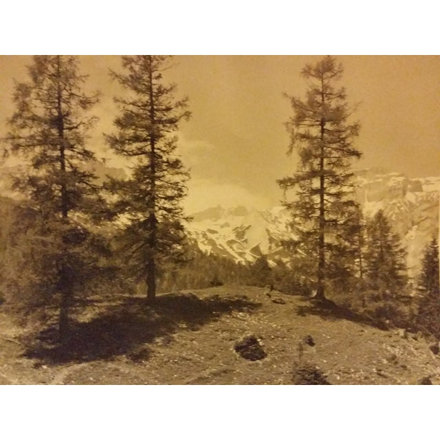Early 20th-C. Ringelspitz Alps Photography - Image 3 of 5