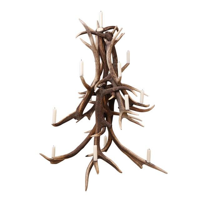 2010s Red Stag Antler Tree-Shape Candelabra For Sale - Image 5 of 5