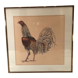 """Vintage """"Gallo De Rino Caganuey"""" Numbered Rooster Print For Sale"""