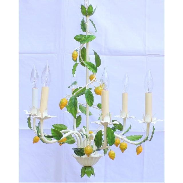 Vintage Italian Lemon Tree Chandelier For Sale - Image 9 of 13