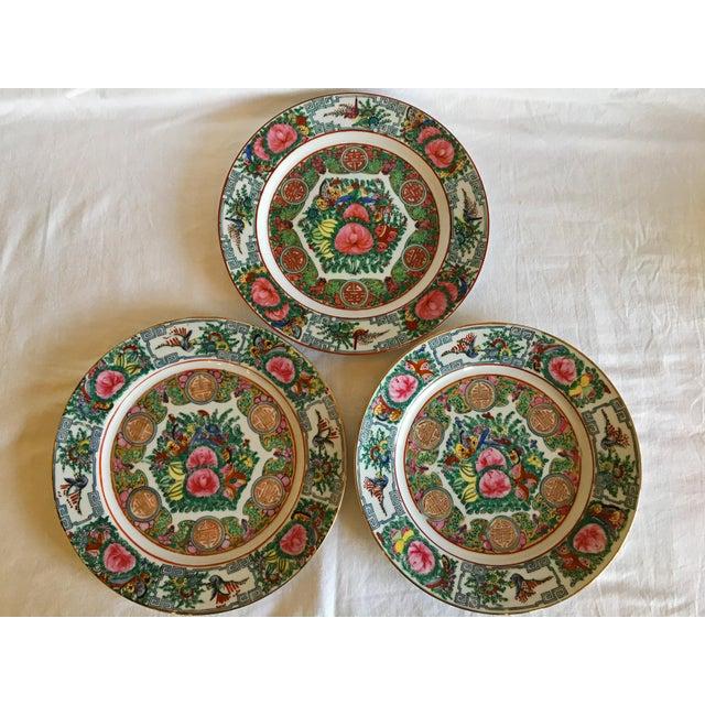 Vintage Famille Rose Medallion Decorative Plates - Set of 3 For Sale - Image 13 of 13
