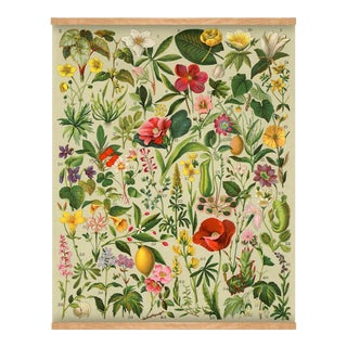 Antique 'Spanish Botanical' Wall Hanging