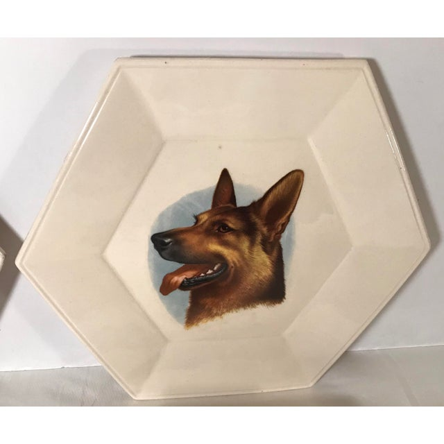 Mid 20th Century Vintage Ceramic Dog Plates - Set of 4 For Sale - Image 5 of 11