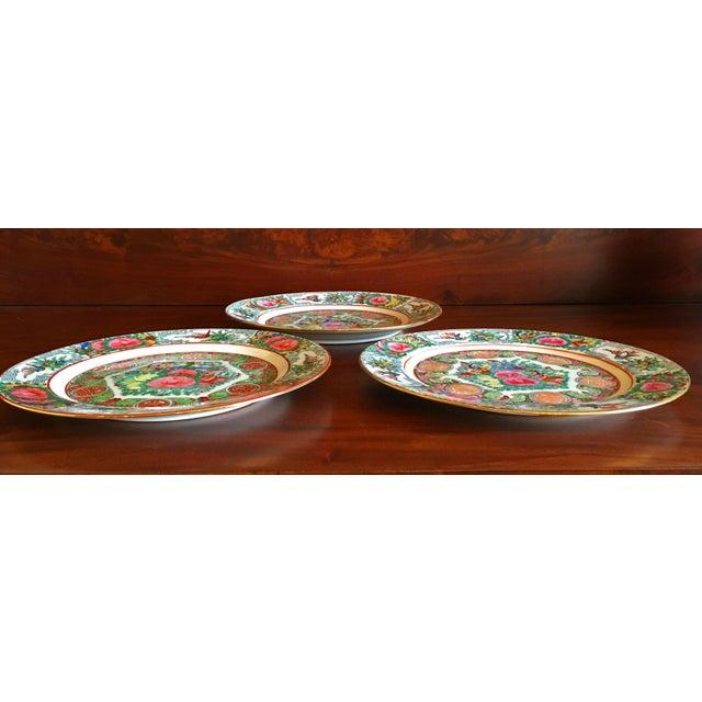 Vintage Famille Rose Medallion Decorative Plates - Set of 3 For Sale - Image 12 of 13