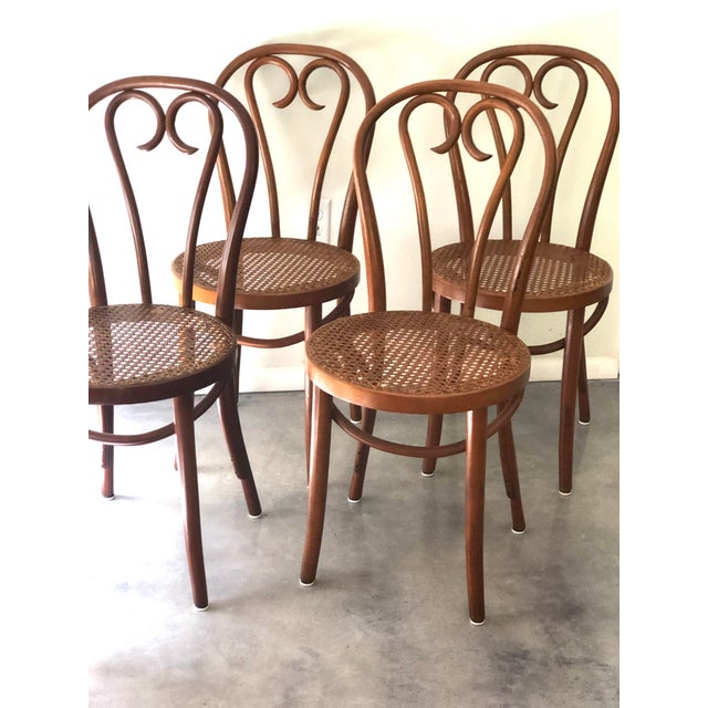 Vintage Mid-Century Thonet style cane chairs in excellent condition. Made in Romania. Chairs and cane are tight and add a...