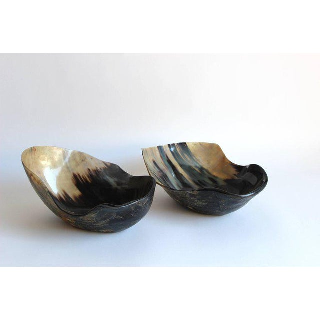 Bone Set of Two Free-Form Horn Bowls For Sale - Image 7 of 9