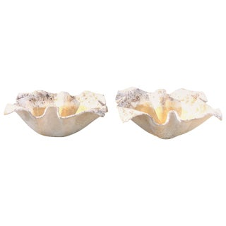 20th Century Small Willy Guhl Planters From Switzerland - a Pair For Sale