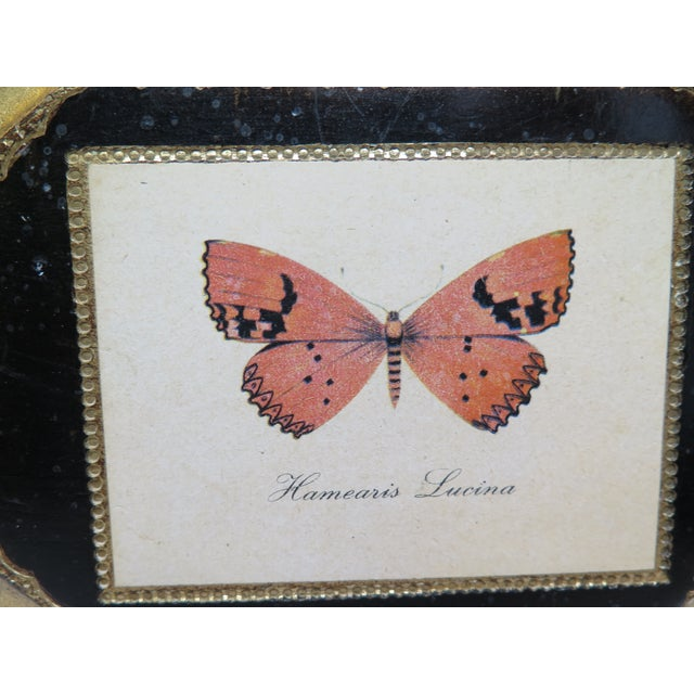 Butterfly Plaque Hanging Decopage Style For Sale - Image 4 of 12
