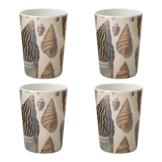 Conch Tumblers - Set of 4 For Sale