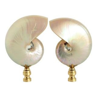 Mother of Pearl Nautilus Shell Lamp Finials - a Pair For Sale