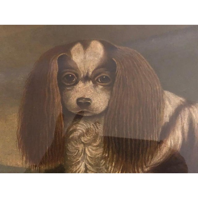 Paint Late 20th Century Portrait of a Cavalier King Charles Spaniel Oil on Canvas Painting For Sale - Image 7 of 11