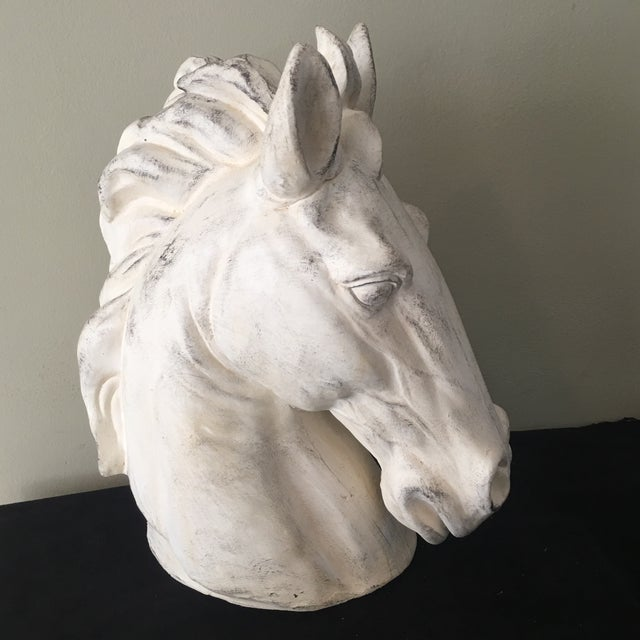 Whitewashed Outdoor Horse Bust For Sale - Image 5 of 7