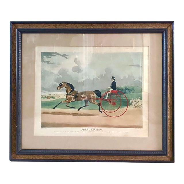 """Lord William"" Trotting Horse 1845 Aquatint For Sale"