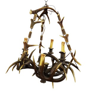 Rustic Black Forest Antler Chandelier Ca. 1900 For Sale