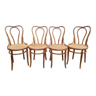 Antique Michael Thonet No. 16 Bentwood Beech Bistro Dining Chairs - Set of 4 For Sale