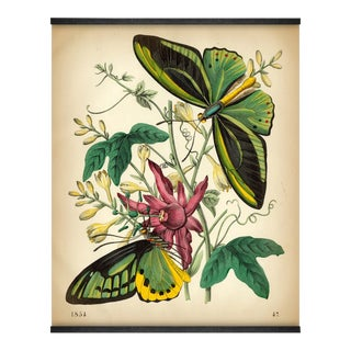 Antique 'Exotic Butterflies' Wall Hanging