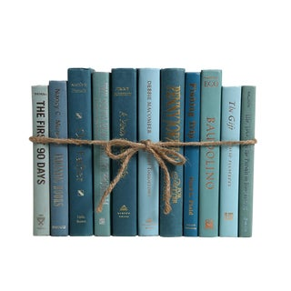 Modern Gulf Coast ColorPak : Decorative Books in Shades of Blue & Green For Sale