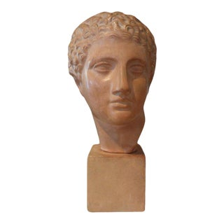 1920s French Terra Cotta Bust of a Classical Male For Sale