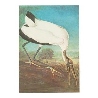 1966 Vintage John James Audubon Wood Ibis Lithograph Print For Sale