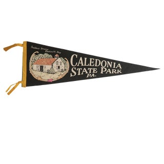 Vintage Caledonia State Park Pa. Felt Flag Pennant For Sale