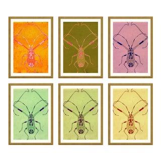 Long Legged Bug Set of 6 by Jessica Molnar in Gold Frame, Medium Art Print For Sale