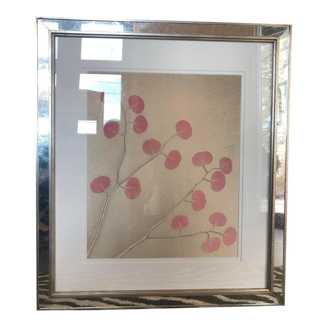 Organic Nature Pressing on Velvet, Framed For Sale