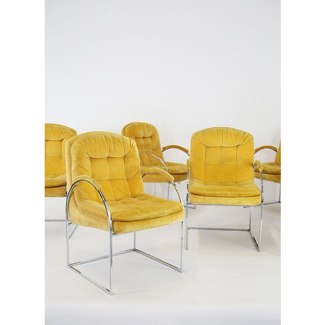 Set of 6 chairs by Milo Baughman from 1970. American design. Velvet and chrome-plated steel. Its back and seat are covered...