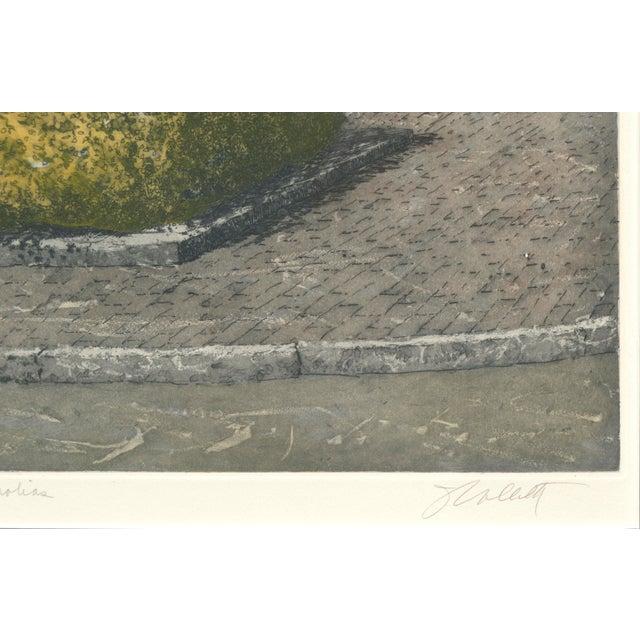 Magnolia, Beacon Hill Boston by John Colette For Sale - Image 4 of 5