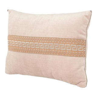 BViz Design Pillow