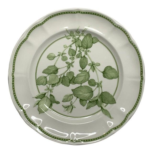 "1960s Richard Ginori ""Fresh Herbs - Oregano"" Salad Plate For Sale"