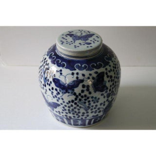 Blue & White Butterfly Ginger Jar Preview