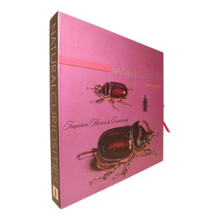 2000s Decorative and Illustrated Limited Edition Antique Prints, Christopher Wilcox's Natural Curiosities - Imperator Historia DI Insectorum Vol. 14. For Sale