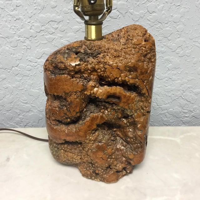 Brown Mid-Century Naturalistic Burl Wood Lamp For Sale - Image 8 of 10