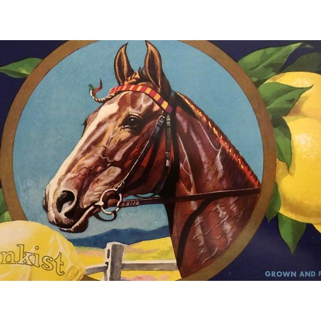Arts & Crafts 1930s Vintage Sunkist Lemons Horse Fruit Crate Label For Sale - Image 3 of 5