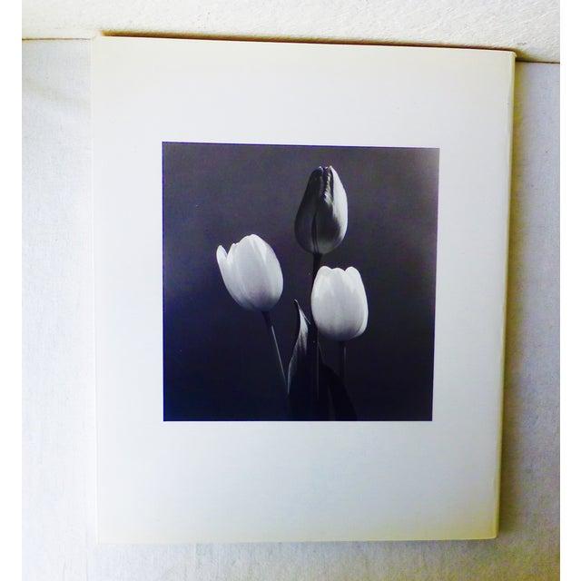Hana, Yasuhiro Ishimoto Book For Sale - Image 11 of 11