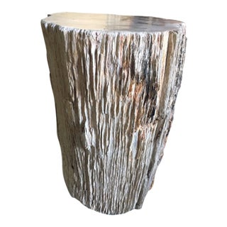 ABC Carpet Petrified Wood Stool For Sale