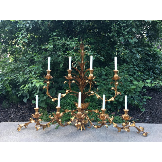Hollywood Regency Gilt Lighted 8-Arm Wall Sconce For Sale - Image 9 of 9