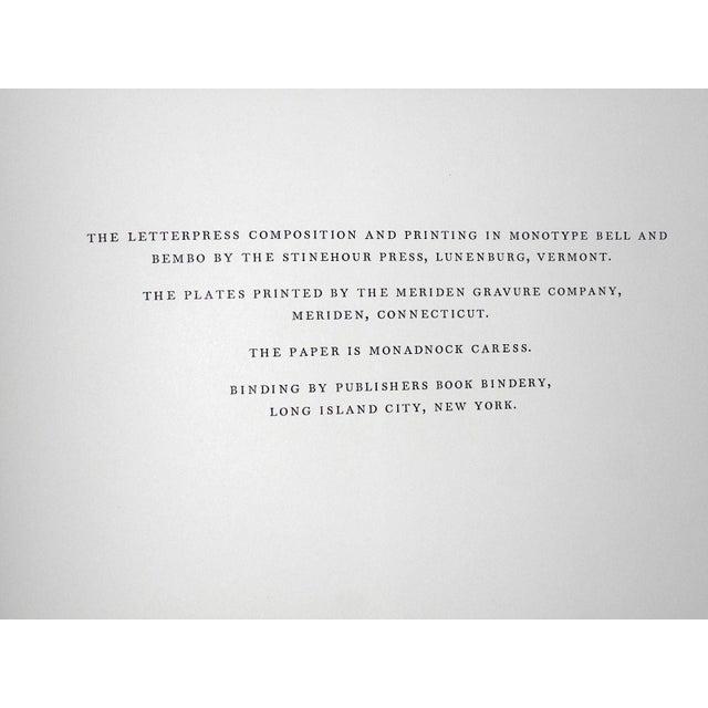 "Figurative Large Vintage Photogravure-""Georgia O'Keeffe"" by Alfred Stieglitz (Usa 1864-1946) For Sale - Image 3 of 6"