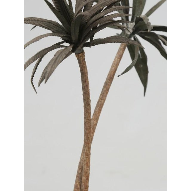 French Metal Palm Trees in Clay Pots For Sale - Image 11 of 13
